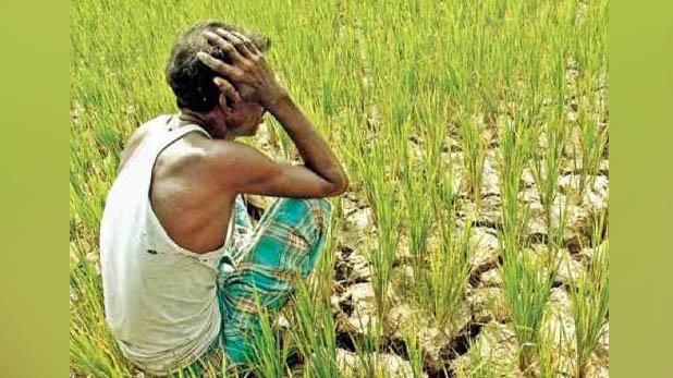 कर्जमाफी, MP: कर्ज के बोझ तले दबे किसान का दर्द, अधूरी कर्जमाफी के चलते रोकी बेटी की शादी