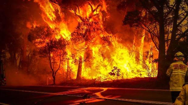 houses destroyed by fire in Australia, ऑस्ट्रेलिया में आग से मचा हाहाकार, 200 घर तबाह, 7 लोगों की मौत