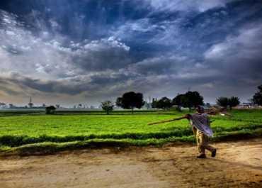 कृषि बिल: किसानों के हित में या विरोध में ? समझिए कृषि विशेषज्ञ डॉक्टर अशोक गुलाटी से