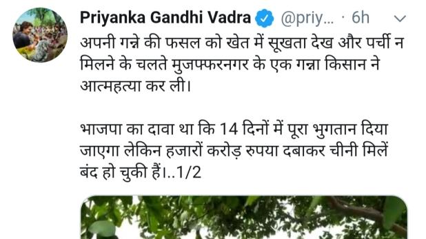 Priyanka Gandhi tweet, प्रियंका गांधी ने गन्ना किसान की आत्महत्या को लेकर UP सरकार को घेरा