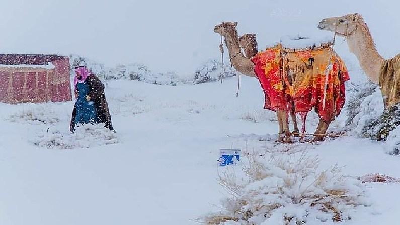 Snowfall in Saudi Arabia