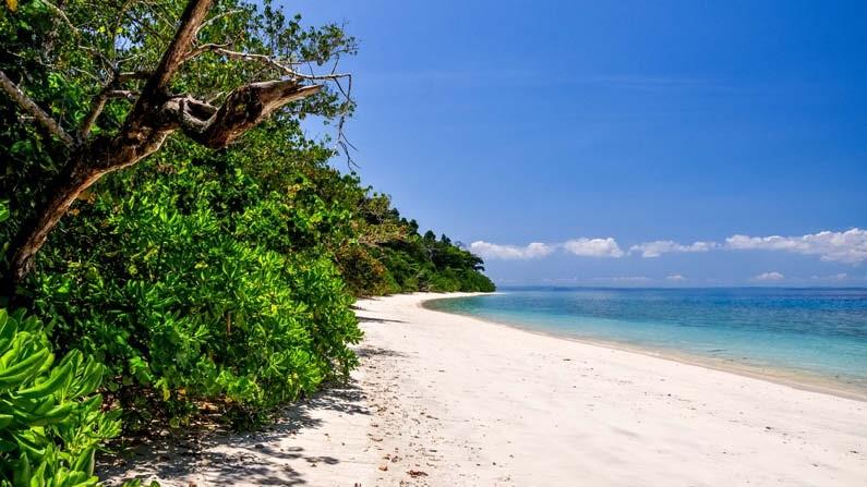 हैवलॉक द्वीप